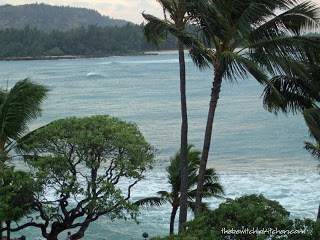 Turtle Bay Resort View