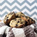 Blueberry and Matcha Muffins