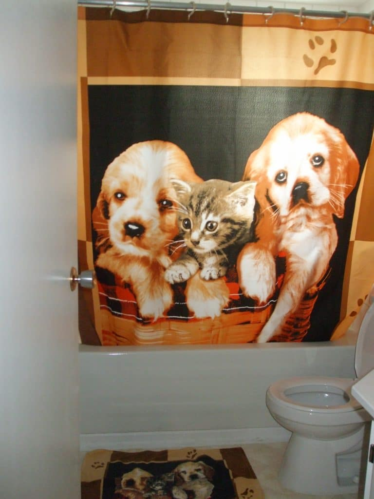 How NOT To Decorate a bathroom
