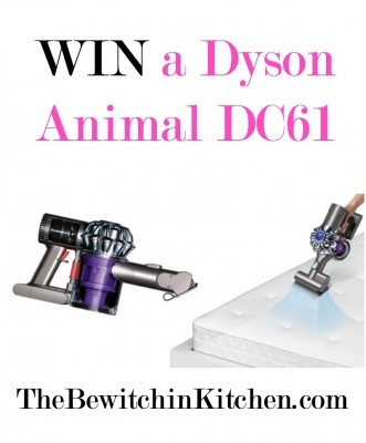 What S Lurking In Your Mattress Dyson Animal Dc61 Review