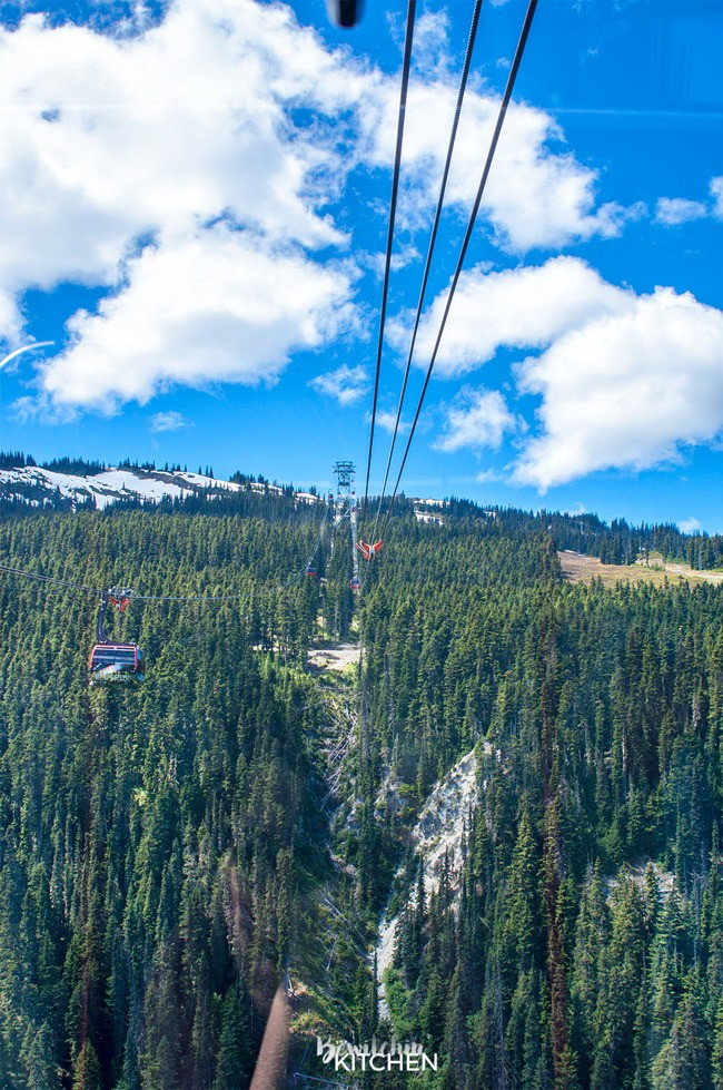 Stunning views from the Peak 2 Peak gondola in Whistler, British Columbia. Part of the top 10 things to do in Whistler during the summer. BC is a beautiful place to travel.