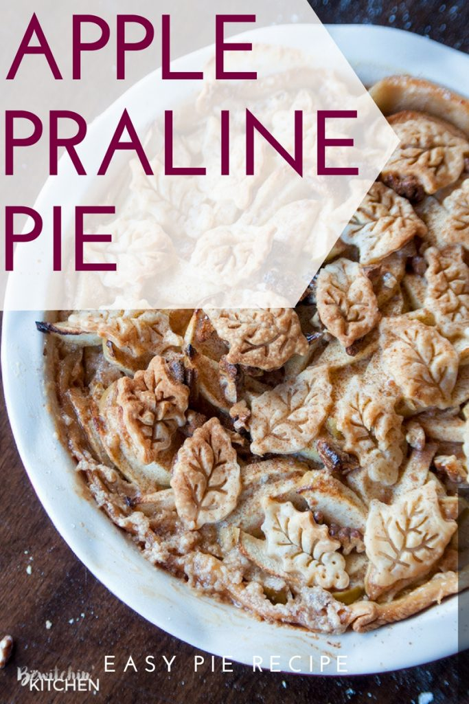 This Apple Praline Pie recipe is everything that is good about fall! Sweetened condensed milk, apples, pecans and cinnamon. I love fall dessert recipes!