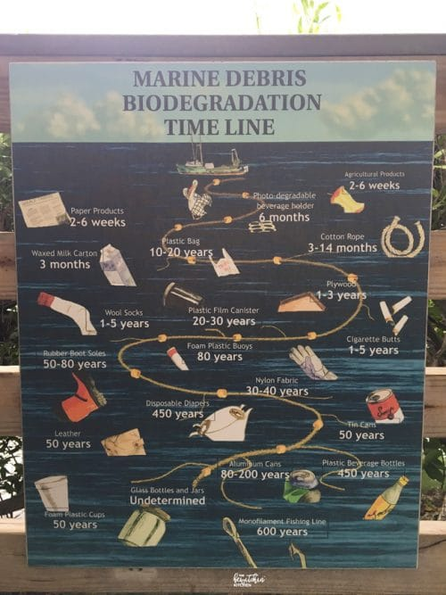 This is how long it takes for garbage to degrade in the ocean. I learned this at Dolphin Connection at Hawks Cay.