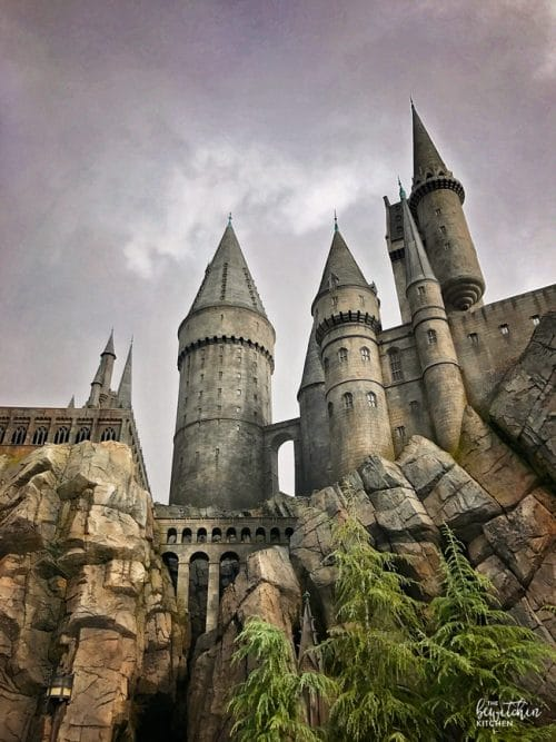 The Wizarding World of Harry Potter - A MUST visit in California.