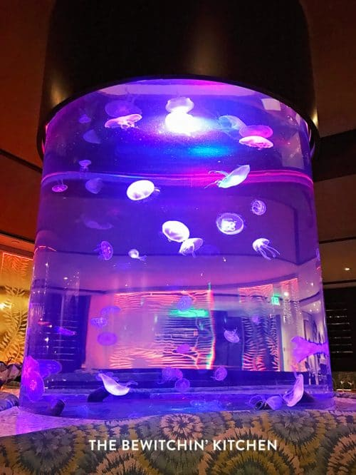 Jellyfish Tank - Oceana - Catamaran Beach Resort in San Diego California
