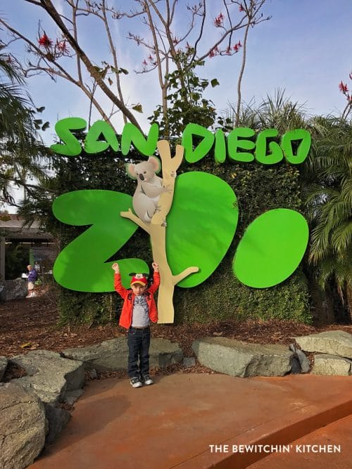 San Diego Zoo - so much fun for animal lovers and young kids!