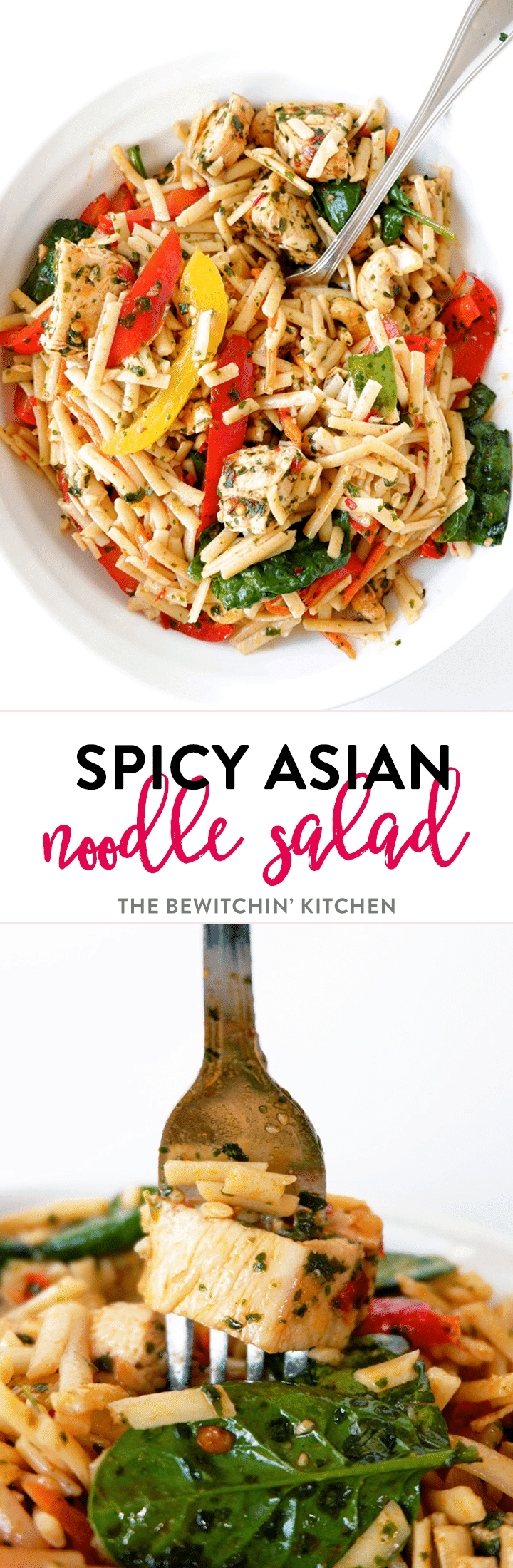 Spicy asian noodle salad with grilled chicken the bewitchin kitchen spicy asian noodle salad recipe a delicious cold pasta salad recipe with an asian dressing forumfinder Choice Image