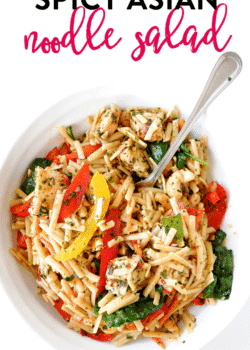 Spicy asian pasta salad recipe - a delicious cold pasta salad recipe with an asian dressing with sesame oil, chili flakes, chili paste, garlic and more.