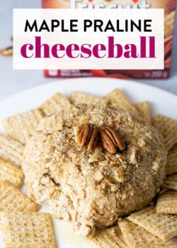 This maple praline cheeseball is a must have Christmas party appetizer. Sweet maple syrup, cinnamon, and crunchy pecans make this holiday cheeseball a favorite. Serve this delicious dessert dip with cinnamon crackers and fruit.