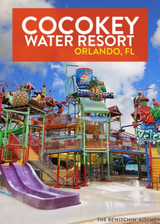 Huge water park and waterslides for families in orlando florida