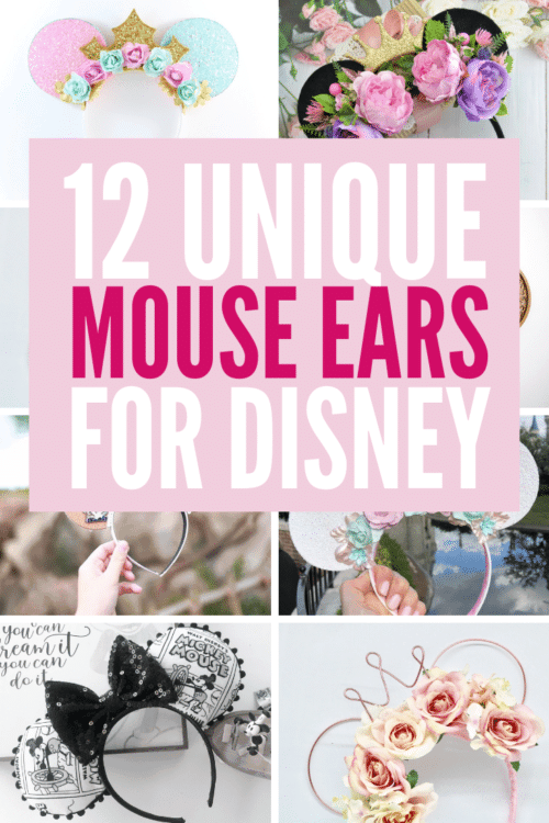 variety of unique mouse ears for disney