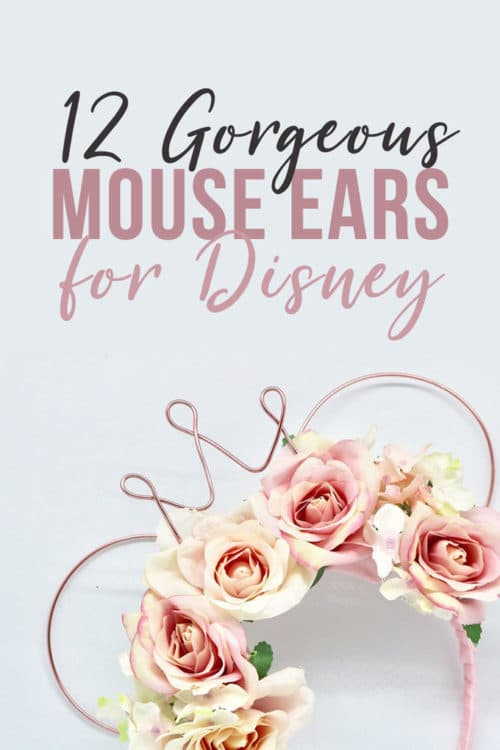 gorgeous wire mouse ears