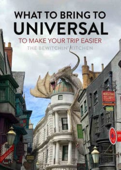 what to bring to universal studios